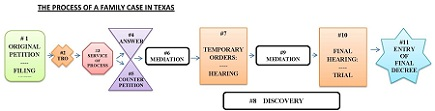 Family Case Process